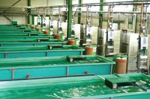 Fish farming - tanks
